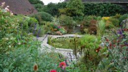 Quelles plantes pour votre jardin en septembre ?